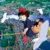 Ghibli Animator Makiko Futaki Passes Away